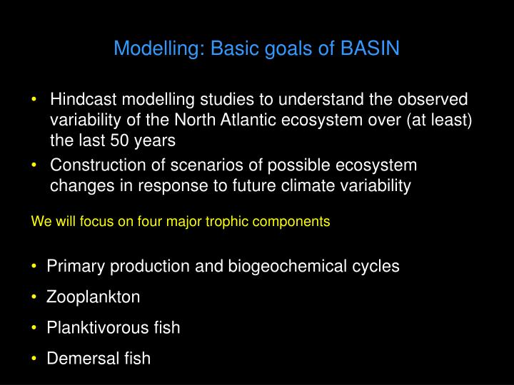 Modelling: Basic goals of BASIN