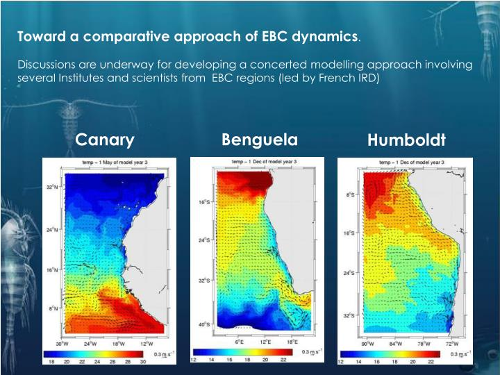 Toward a comparative approach of EBC dynamics