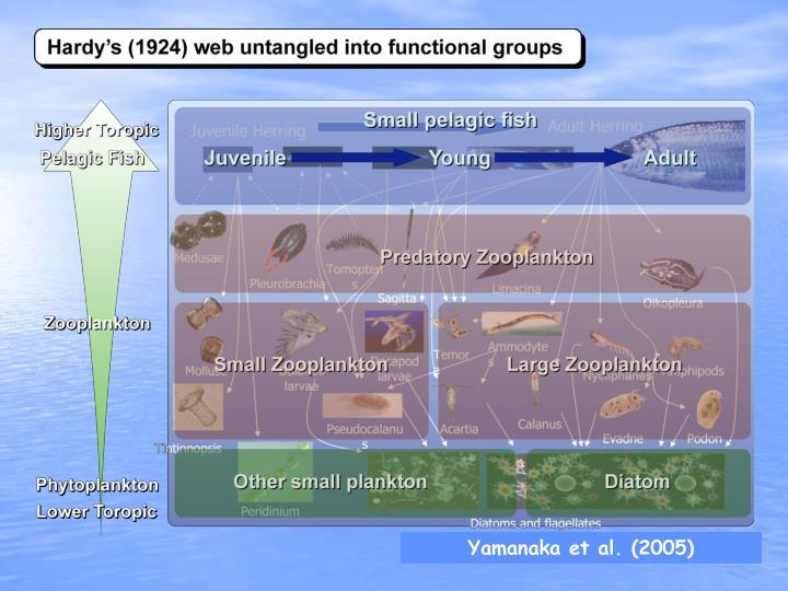 Yamanaka et al. (2005)