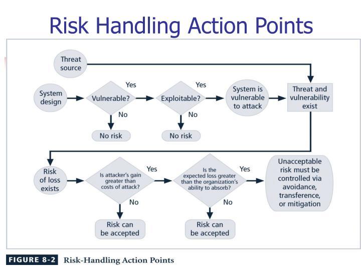 Risk Handling Action Points