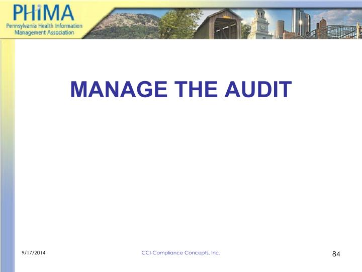 MANAGE THE AUDIT