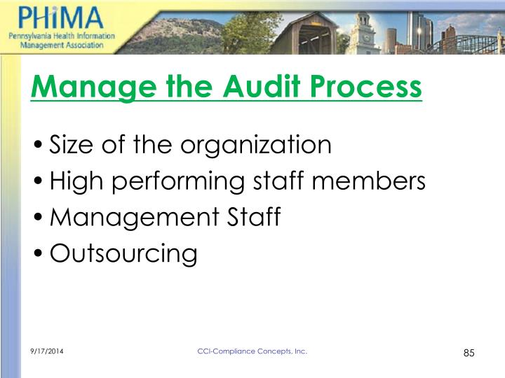 Manage the Audit Process