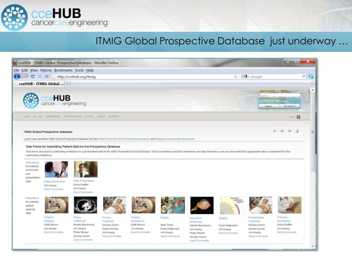 ITMIG Global Prospective Database  just underway …