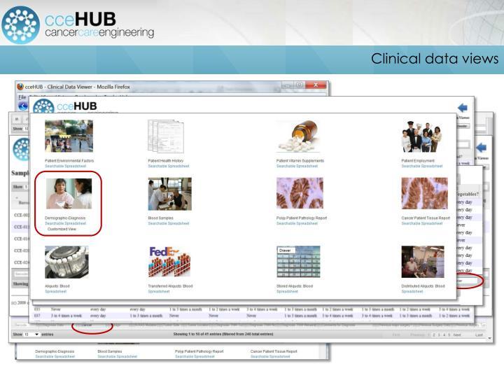 Clinical data views