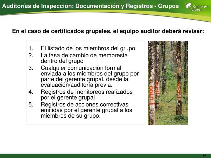 Auditorías de Inspección: Documentación y Registros - Grupos