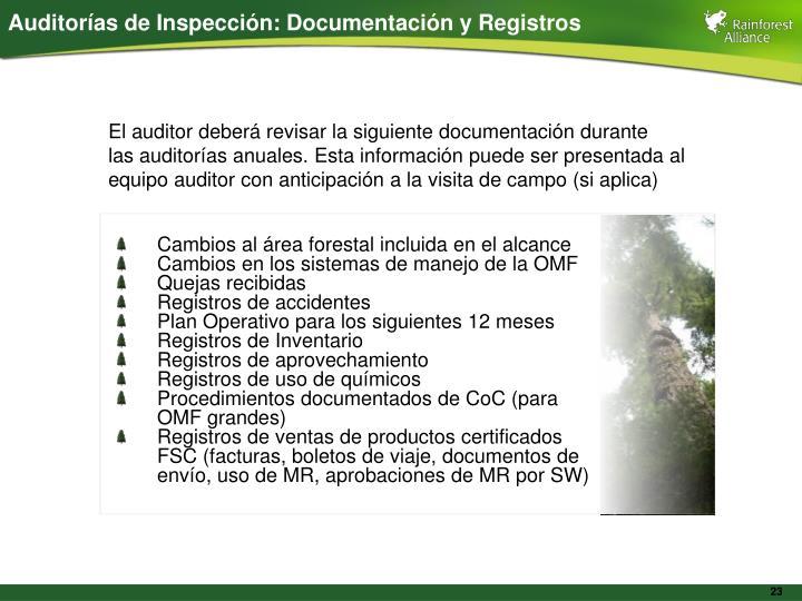 Auditorías de Inspección: Documentación y Registros