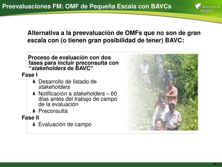 Preevaluaciones FM: OMF de Pequeña Escala con BAVCs
