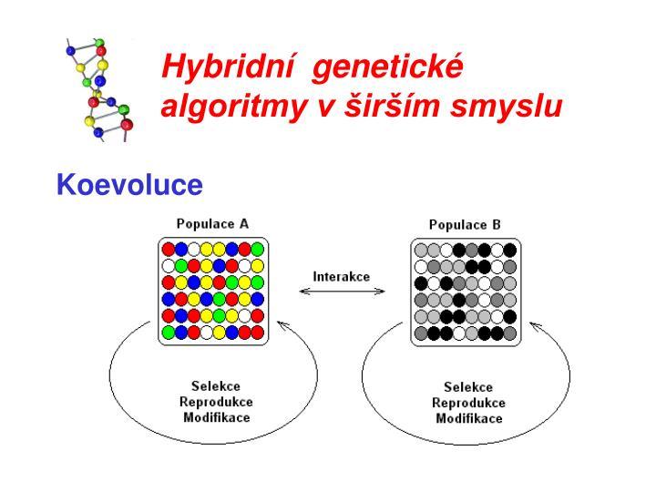 Hybridní  genetické algoritmy v širším smyslu