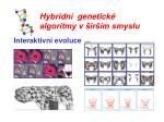 hybridn genetick algoritmy v ir m smyslu3