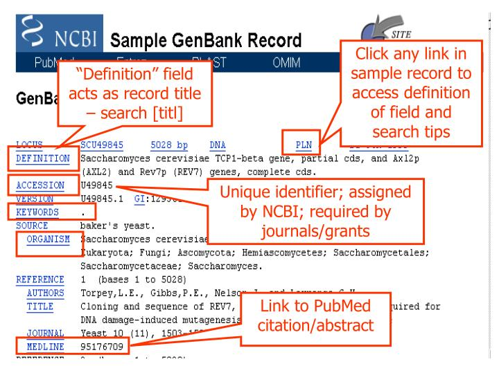 Click any link in sample record to access definition of field and search tips