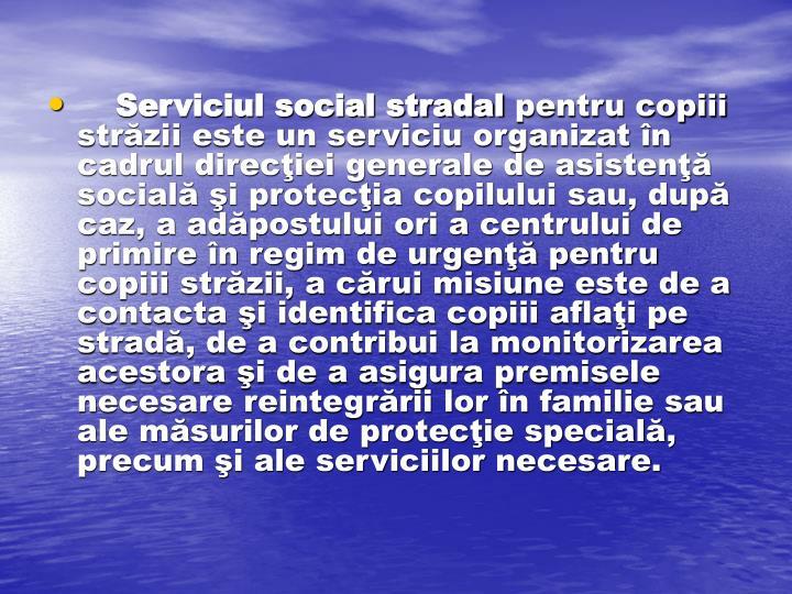 Serviciul social stradal