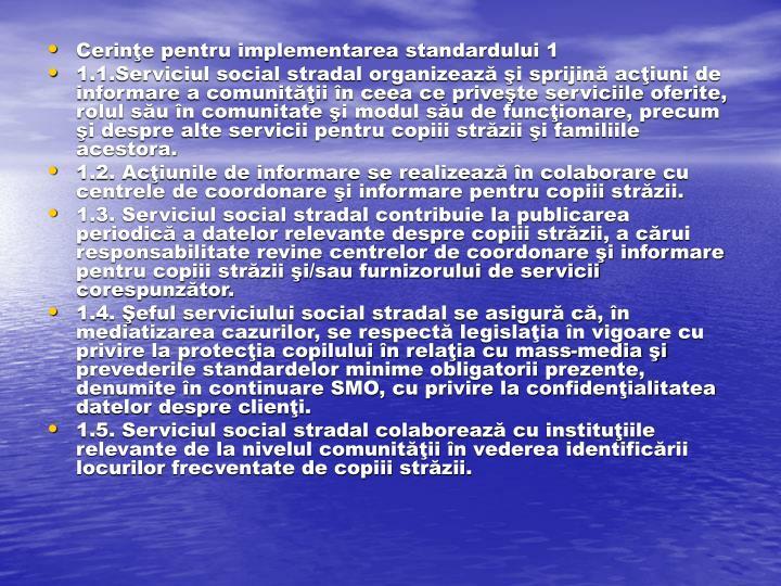 Cerinţe pentru implementarea standardului 1