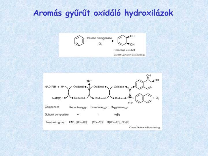 Aromás gyűrűt oxidáló hydroxilázok