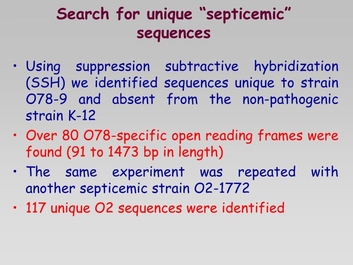 "Search for unique ""septicemic"" sequences"