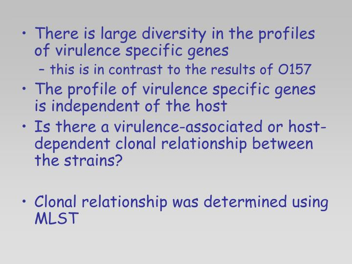 There is large diversity in the profiles of virulence specific genes