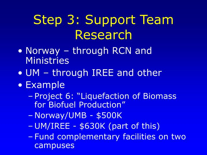 Step 3: Support Team Research