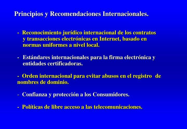 Principios y Recomendaciones Internacionales.