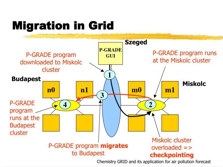P-GRADE program runs