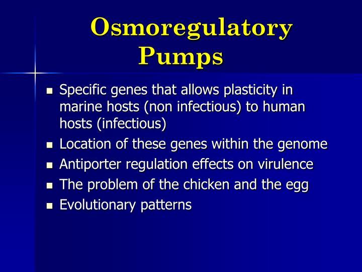 Osmoregulatory Pumps