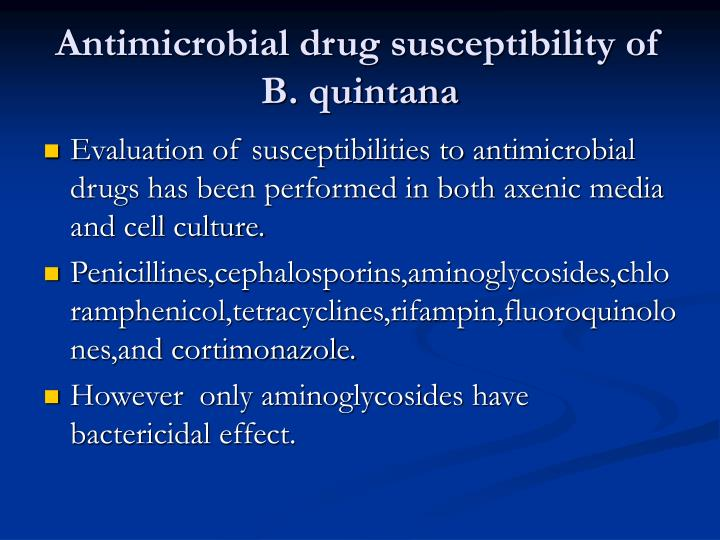 Antimicrobial drug susceptibility of B. quintana