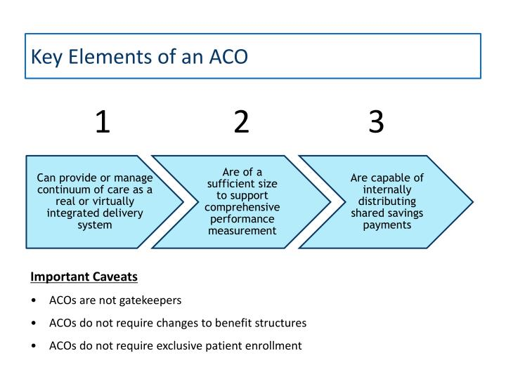 Key Elements of an ACO