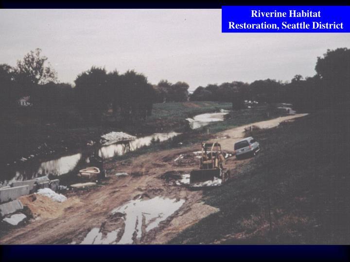 Riverine Habitat Restoration, Seattle District