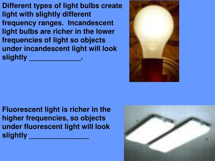 Different types of light bulbs create light with slightly different frequency ranges.  Incandescent light bulbs are richer in the lower frequencies of light so objects under incandescent light will look slightly _____________.