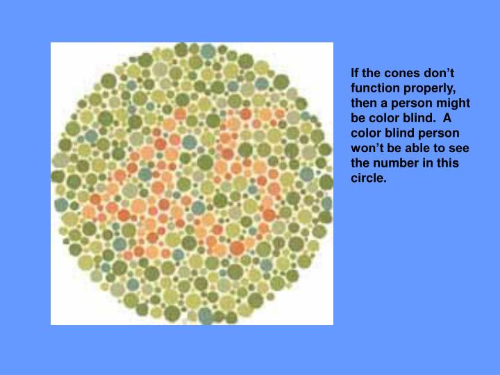 If the cones don't function properly, then a person might be color blind.  A color blind person won't be able to see the number in this circle.