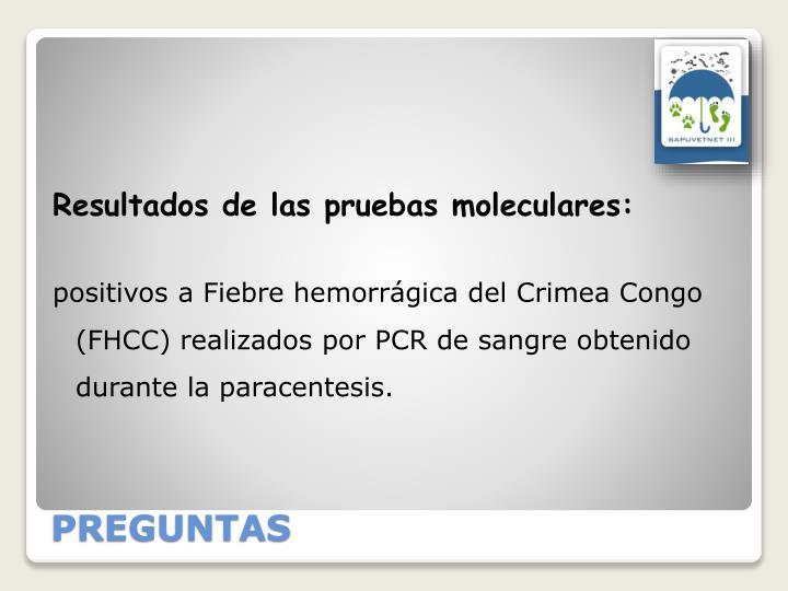 Resultados de las pruebas moleculares: