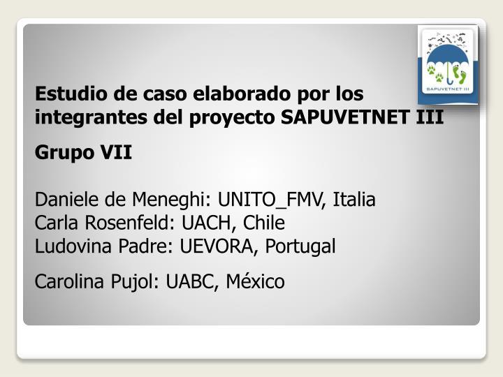 Estudio de caso elaborado por los integrantes del proyecto SAPUVETNET III