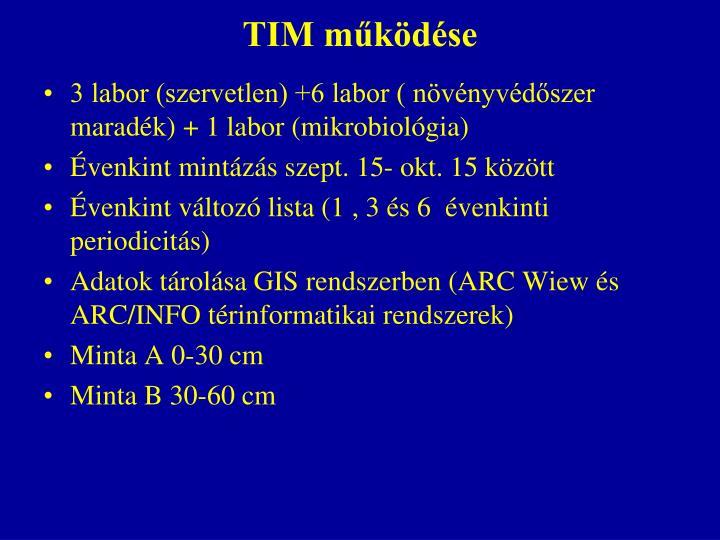 TIM működése