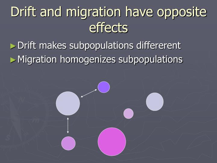 Drift and migration have opposite effects