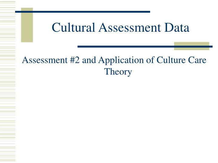 Cultural Assessment Data