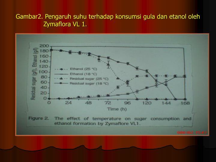Gambar2. Pengaruh suhu terhadap konsumsi gula dan etanol oleh    Zymaflora VL 1.