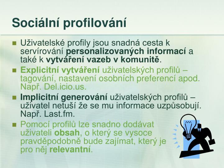 Sociální profilování