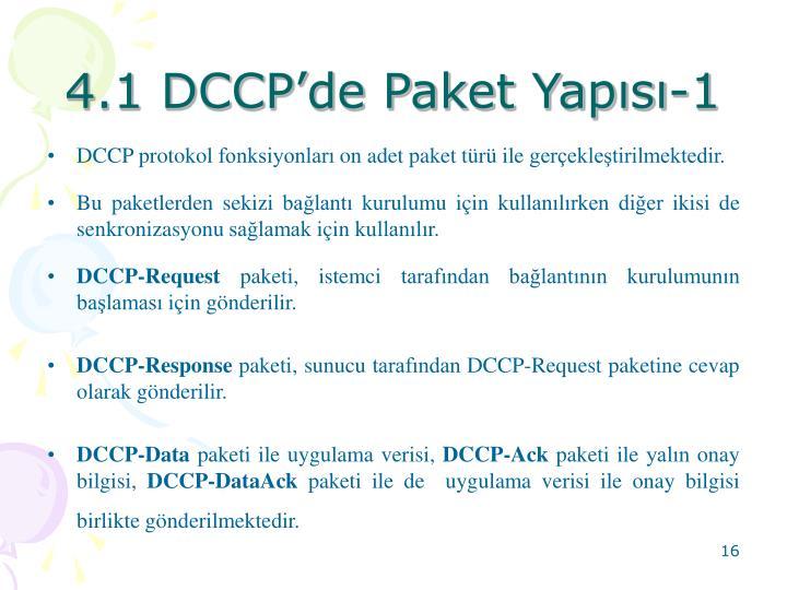 4.1 DCCP'de Paket Yapısı-1