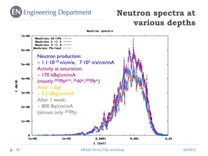 Neutron spectra at various depths