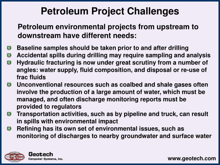 Petroleum project challenges