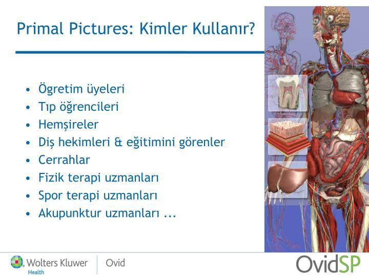 Primal Pictures: Kim