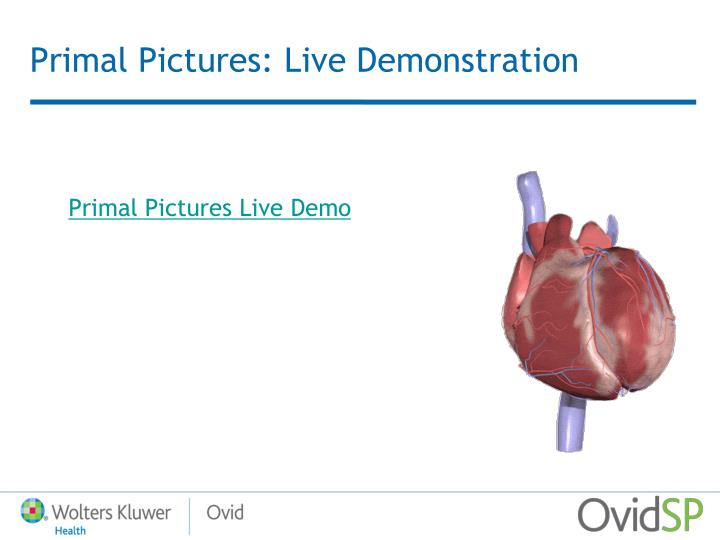 Primal Pictures: Live Demonstration