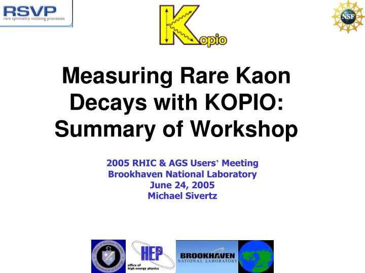 measuring rare kaon decays with kopio summary of workshop