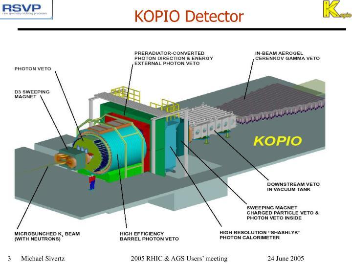KOPIO Detector
