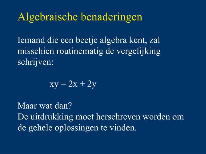 Algebraische benaderingen