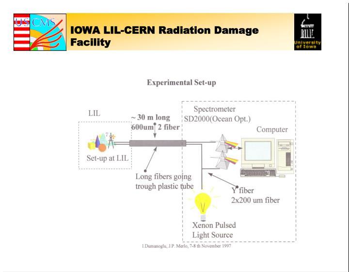 IOWA LIL-CERN Radiation Damage Facility
