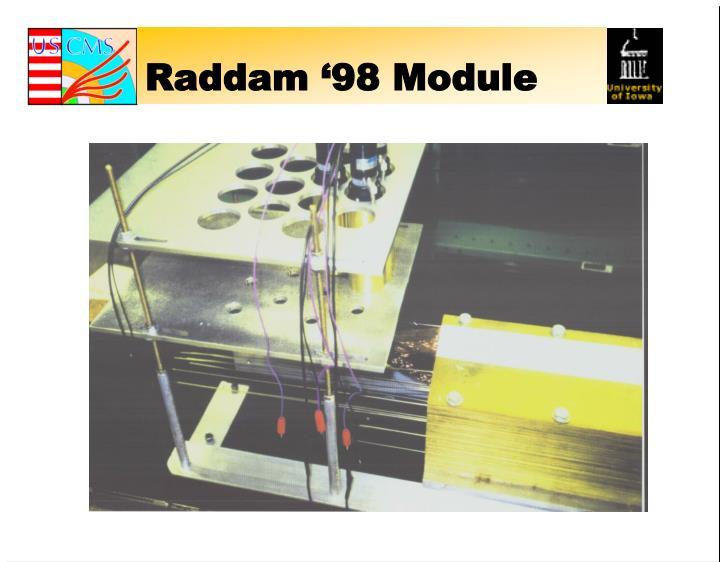 Raddam '98 Module