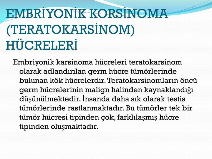 EMBRYONK KORSNOMA (TERATOKARSNOM) HCRELER