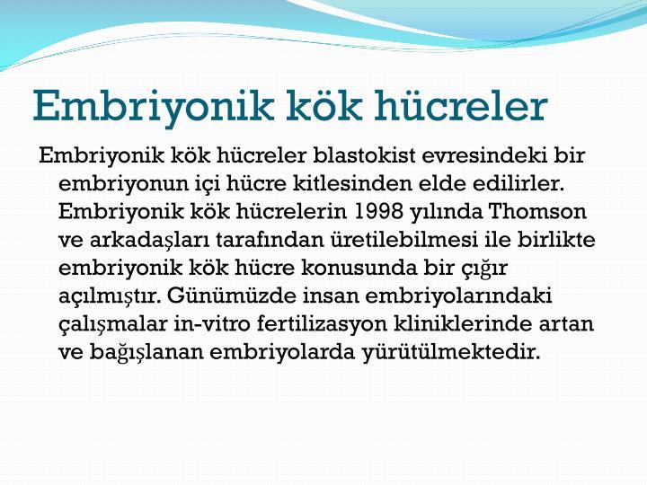 Embriyonik