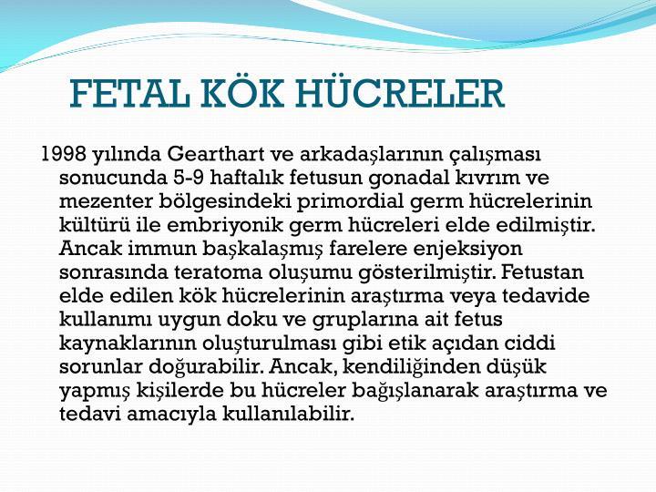FETAL KK HCRELER