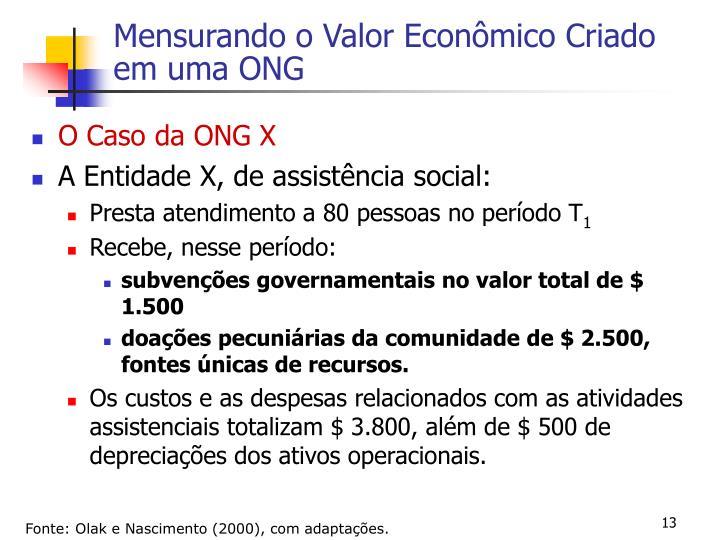 Mensurando o Valor Econômico Criado em uma ONG