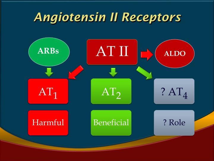Angiotensin II Receptors